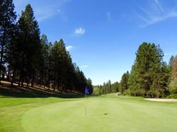 Alta Sierra Golf | Grass Valley