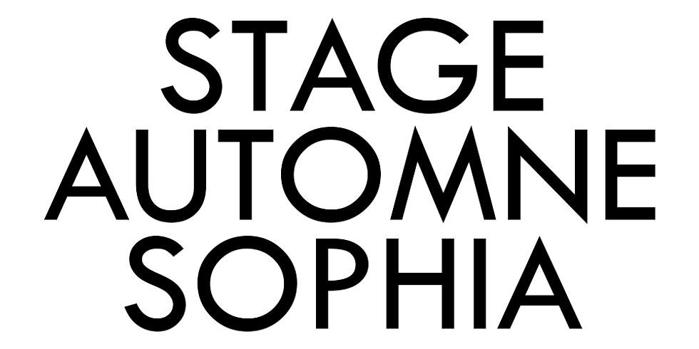 STAGE SOPHIA ANTIPOLIS AUTOMNE