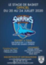 affiche 2020 sharks v2.jpg