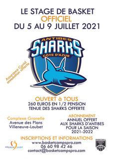 SHARKS 2021