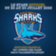 INSTA SHARKS 2.jpg