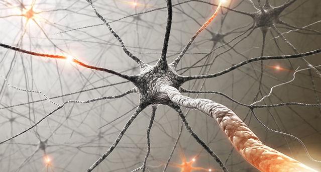 neuronio.jpg