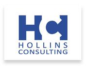 hollins_rectangle.jpg