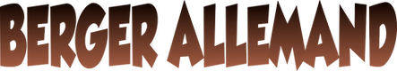 logo berger allemand.png