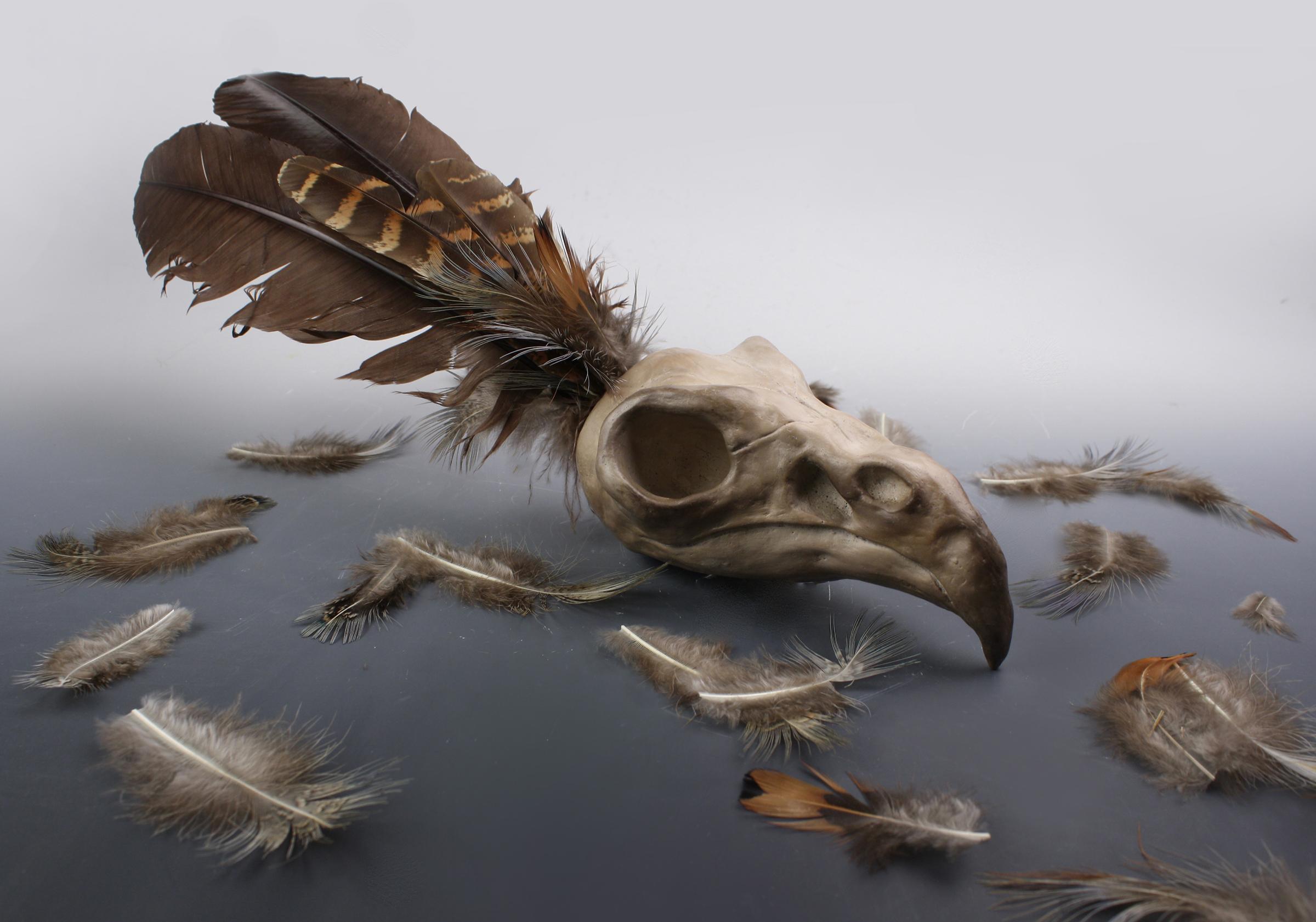 Bird - Kareem Hadid