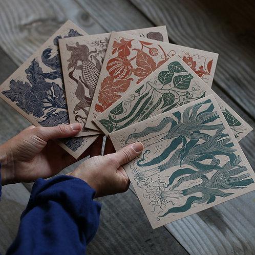 Pack of 5 Vegetable Linocut Cards