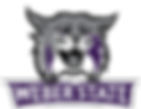 Weber State Icon