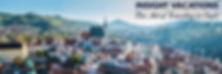 Inisght Banner.jpg