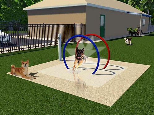 dog water park features