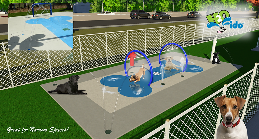 miniature water park for dogs with tennis ball and hoop