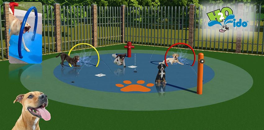circular dog spray park design