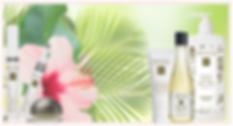 Eminence Organic Skin Care Charishma Beauty Salon Toronto
