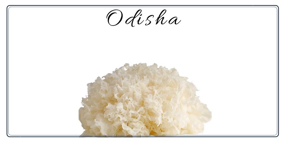 Odisha facial Charishma Beauty Salon Toronto