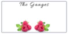 The Ganges Facial Charishma Beauty Salon Toronto