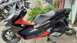 Honda PCX 150cc Model 2019