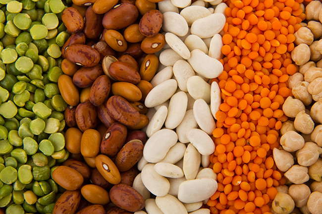 PROTEIN: Why including it in your snacks (and meals too!) is a Good Choice