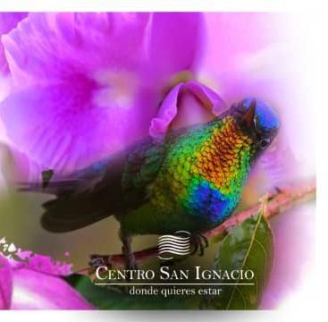 CENTRO SAN IGNACIO celebra Día Mundial de la Fauna Silvestre