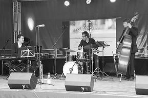 Jazzband, Dinnerband und Hochzeitsband aus dem Raum Karlsruhe, Thomas Jehle Trio, Konzert, Westwind