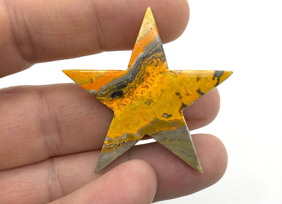 Bumblebee Jasper Star (A Grade)
