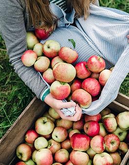 Manzanas en una caja
