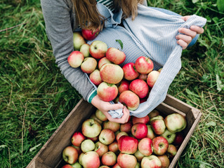 Extra Apples ? 🍎🍏