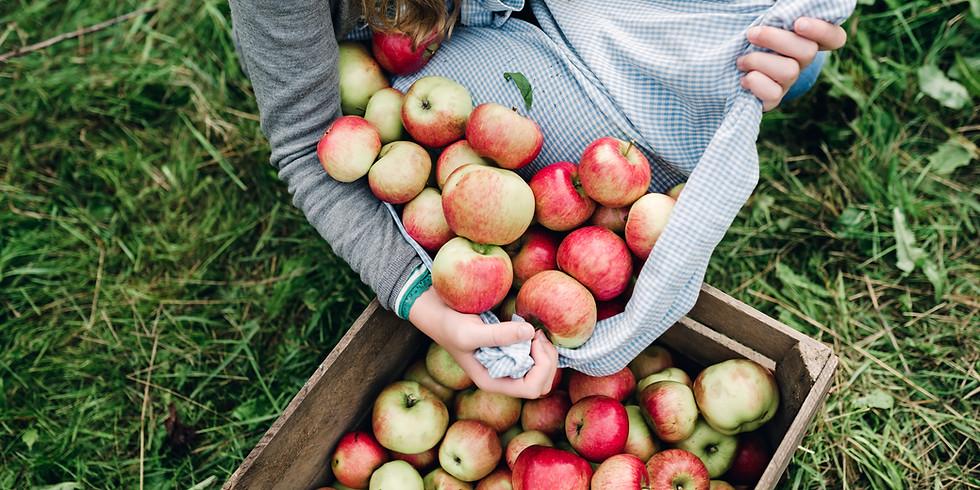 Catalyst Apple-Picking