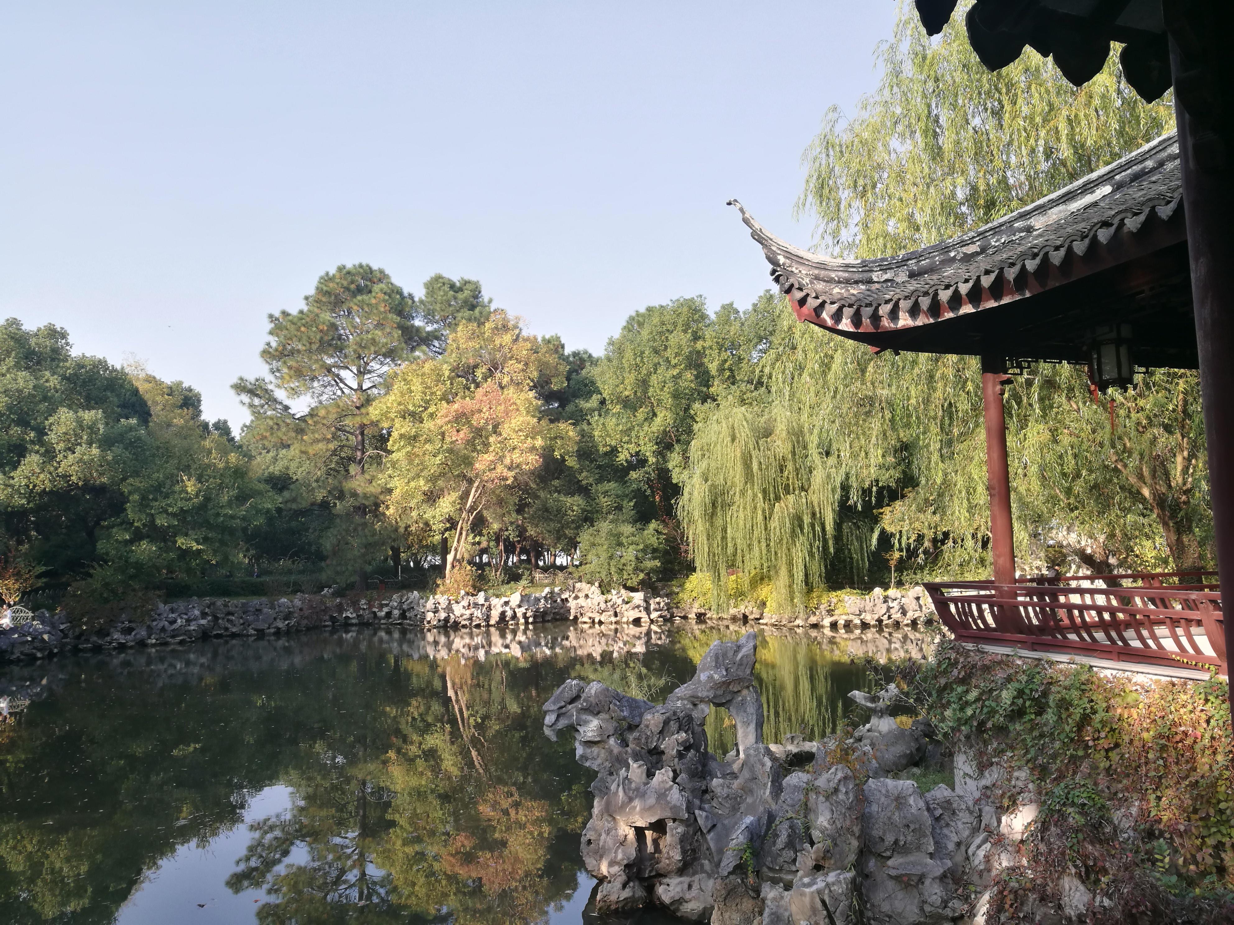 Qi Garden 2
