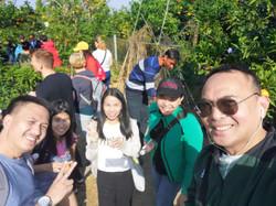 Fruit Picking 7
