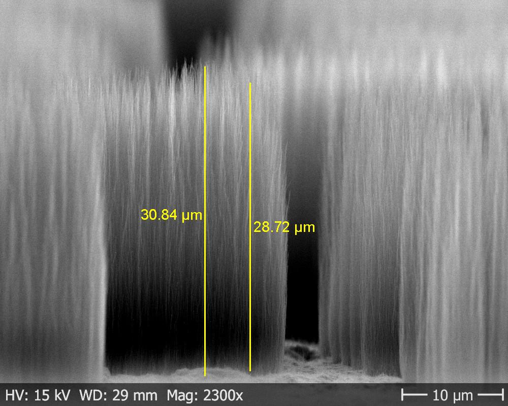 SEM-image of Carbon nanofiber
