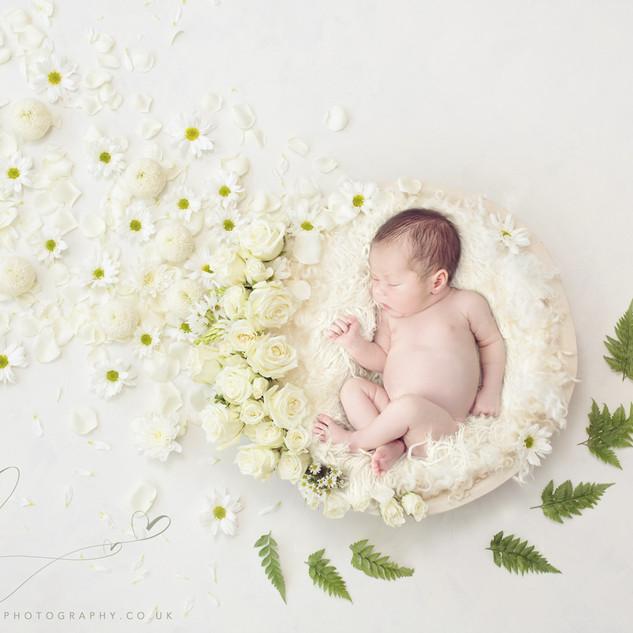 www.marionhillphotography.co.uk-DSC9338.
