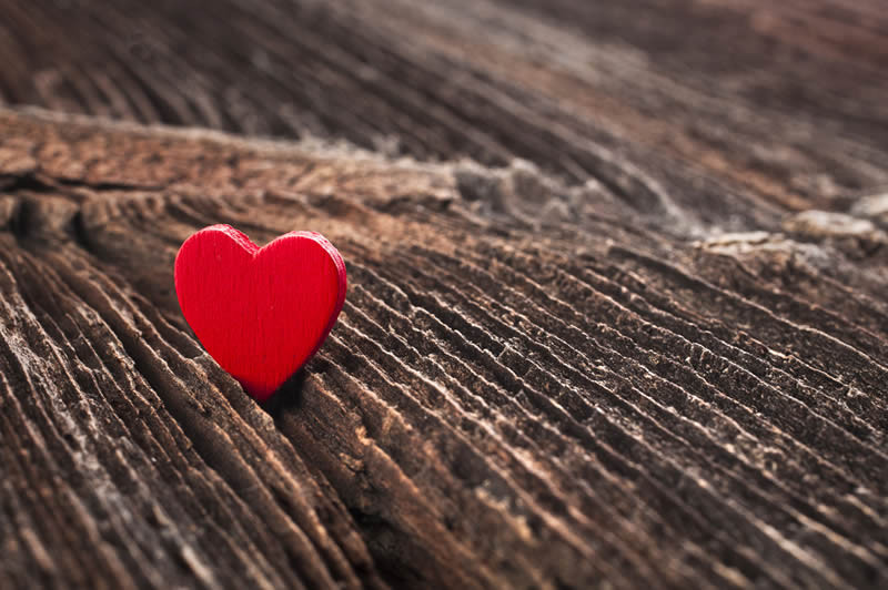 Best Lost Love Spells Caster in Palm Coast