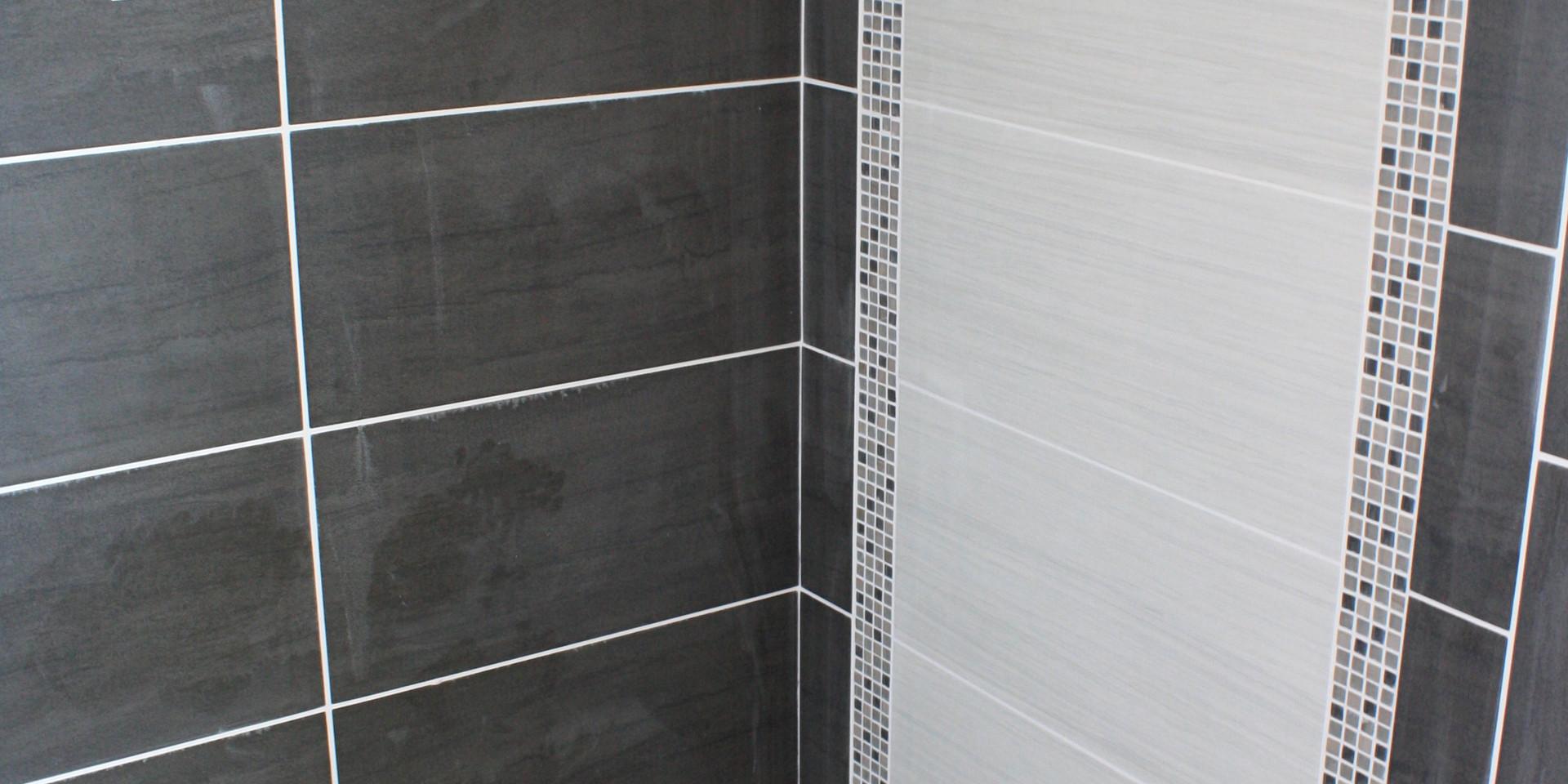 Master Shower (284TE)