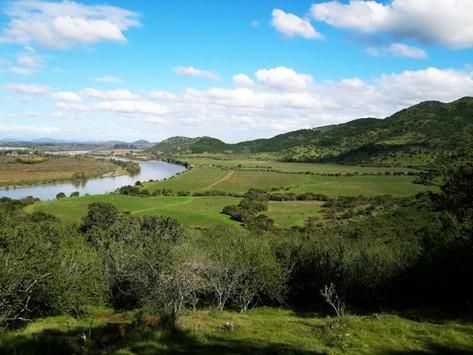 Chile: Maule suma cinco viñas a su Ruta del Vino