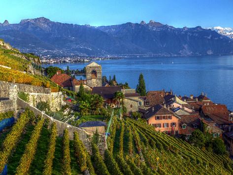 Wine Intelligence: Suiza gana atractivo para la industria del vino