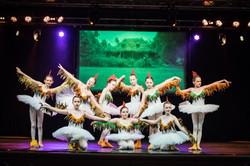6216_Ballett