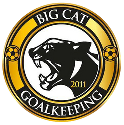 BIG CAT GOAL KEEPING