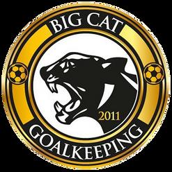 BIG CAT GOAL KEEPING