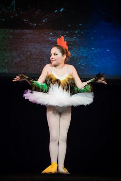 6206_Ballett