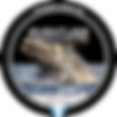 LogoSinFecha_chico.png