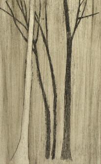 Vier bomen