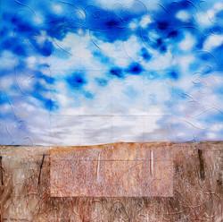 TABE051- De Hoop Wheatfied South Africa B.jpg