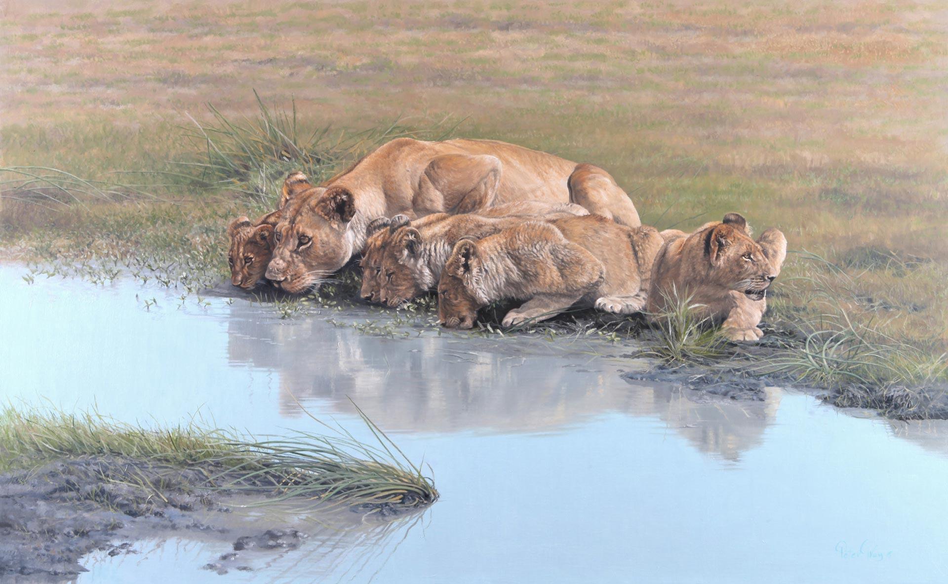 Mothers-Pride.jpg