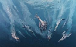 Peter-Gray_Oceans-Eleven1.jpg
