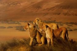 Namibian-Lions.jpg