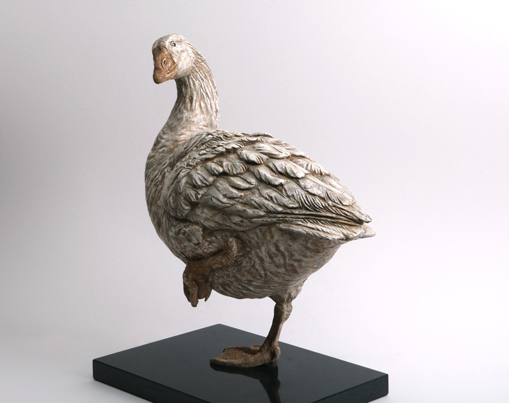 Preening-Goose.jpg