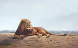 Peter-Gray_Namibian-Monarch.jpg