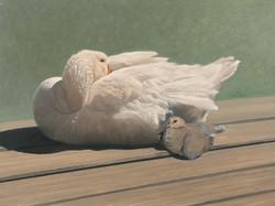 Goose-Dove.jpg
