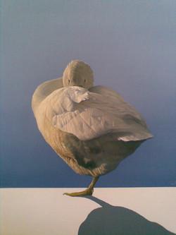 Golden-Goose.jpg