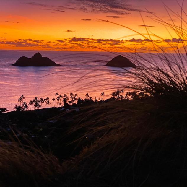 Sunrise over easy