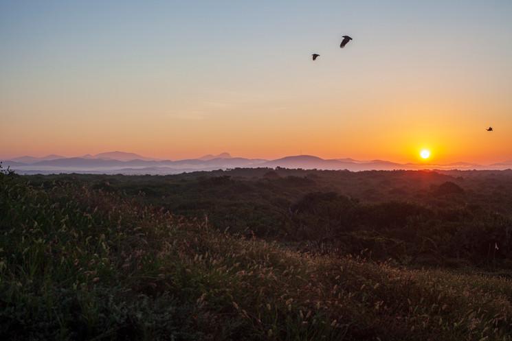 Campamento tortuguero - Xala